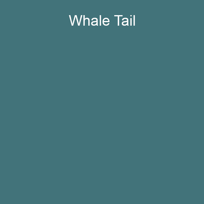 Aqua Blue Green Trending Solid Color Pairs To Graham and Brown 2021 Color of the Year Accent Shade Whale Tail