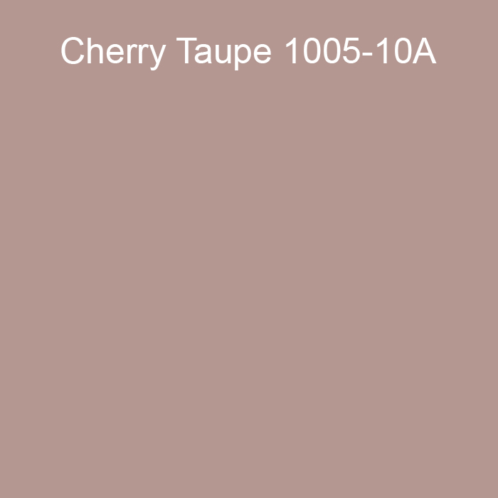 Cherry Taupe 1005-10A Valspar 2021 Color of the Year