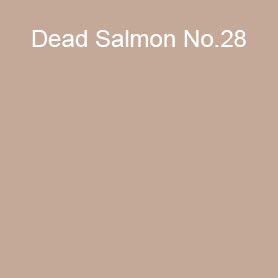 Dead Salmon No.28 Farrow and Ball 2021 Colour of the Year