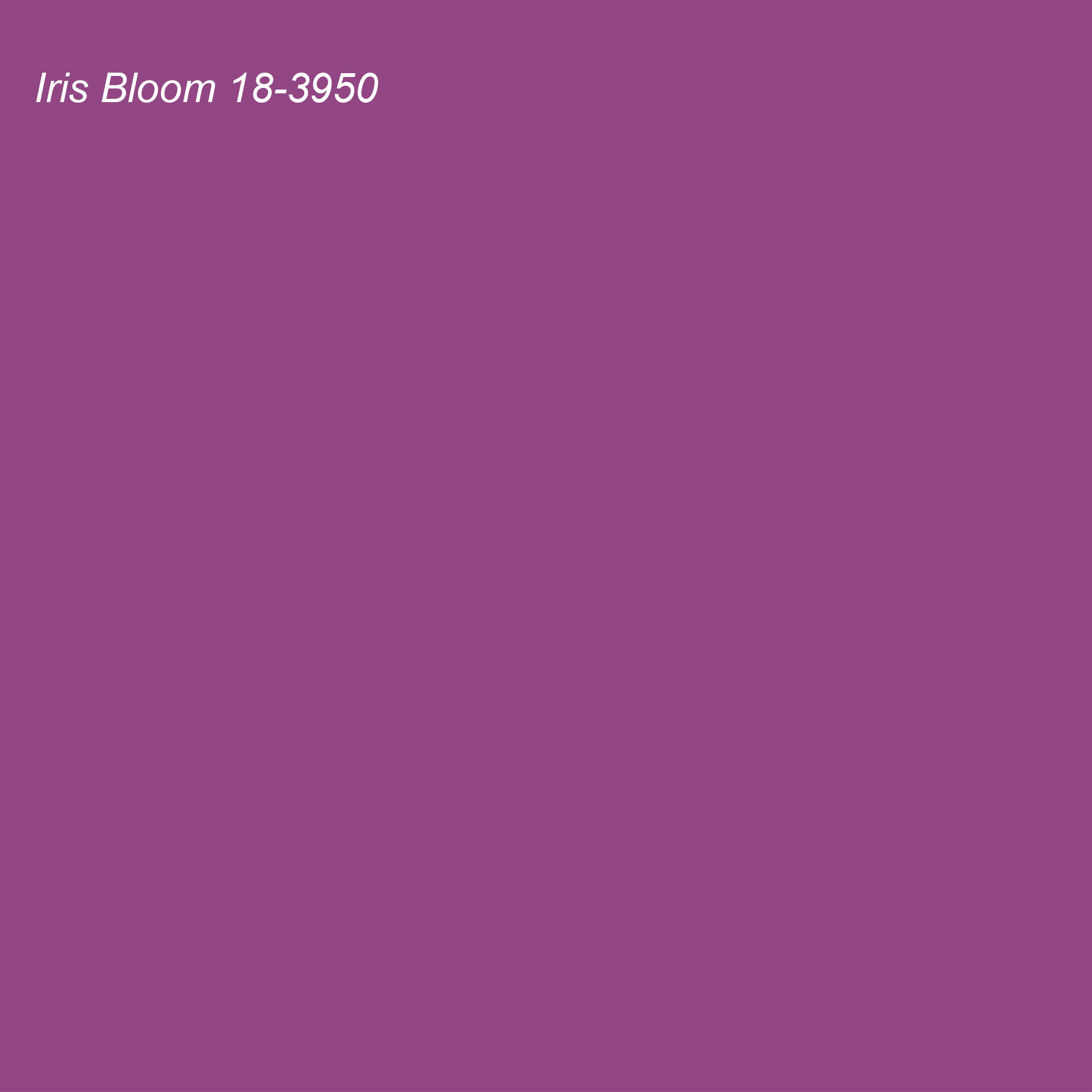 Pantone 2021 Color of the Year Suggested Accent Shade Willowherb 18-3120