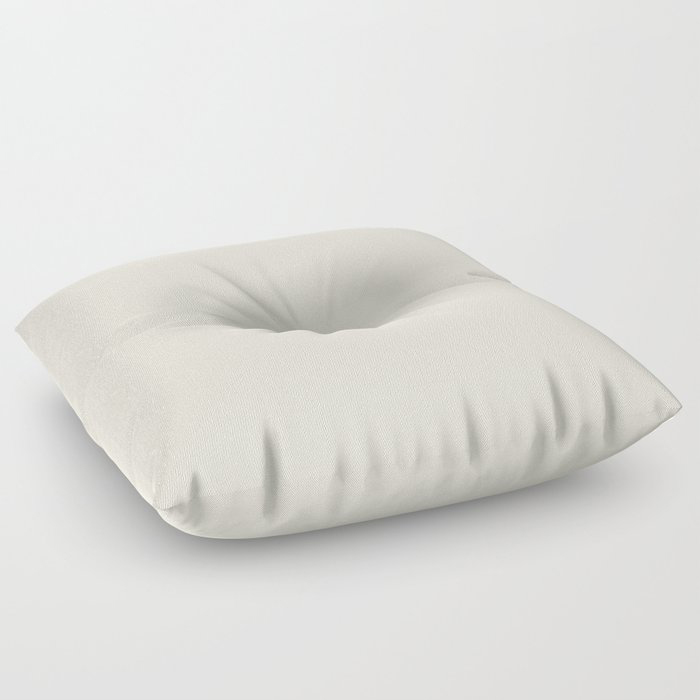 Off White Solid Color Pairs To Behr's 2021 Trending Color Smoky White BWC-13 Floor Pillow