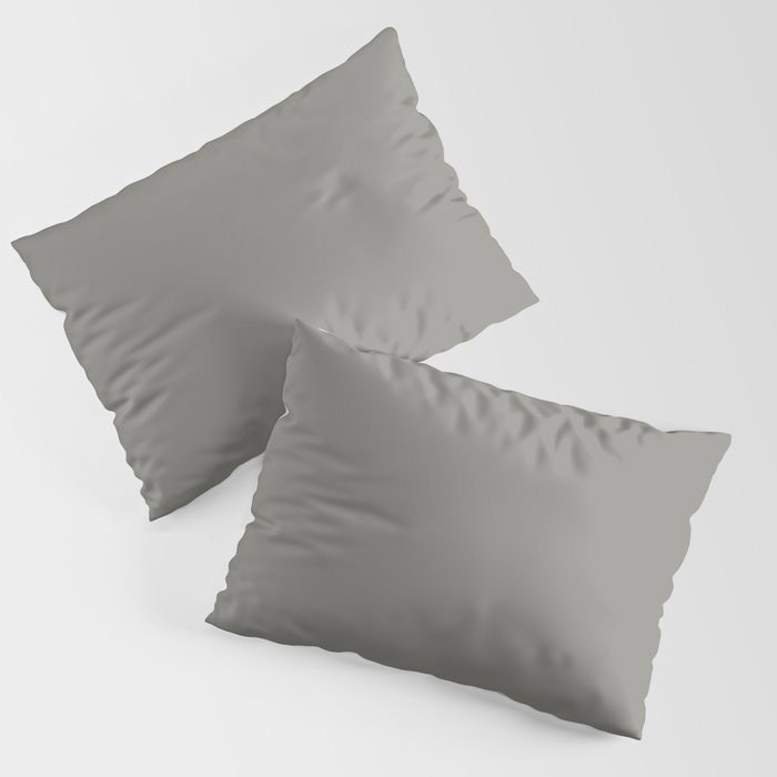 Weathered Wood Grey Solid Color Behr's 2021 Trending Color Barnwood Gray PPU24-07 Pillow Sham