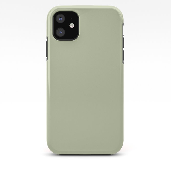Pratt and Lambert 2019 Mellon Green (Sage Green) 18-28 Solid Color iPhone Case