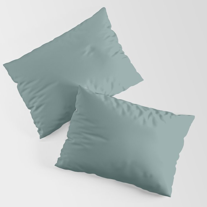 Best Seller Dark Pastel Blue Green Solid Color Pairs W/ Behr's Dragonfly PPU12-03 Pillow Sham