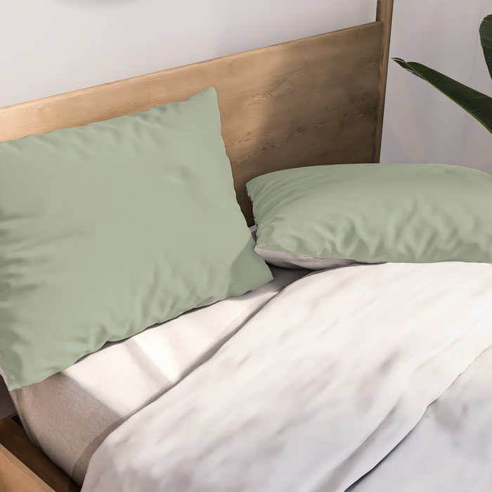 Dark Pastel Sage Green Solid Color Parable to Valspar Irish Paddock 5006-4A Pillow Sham