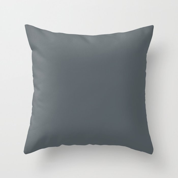 Dark Blue Solid Color Pairs 2022 Popular Hue HGTV Slate Tile HGSW1472 Throw Pillow