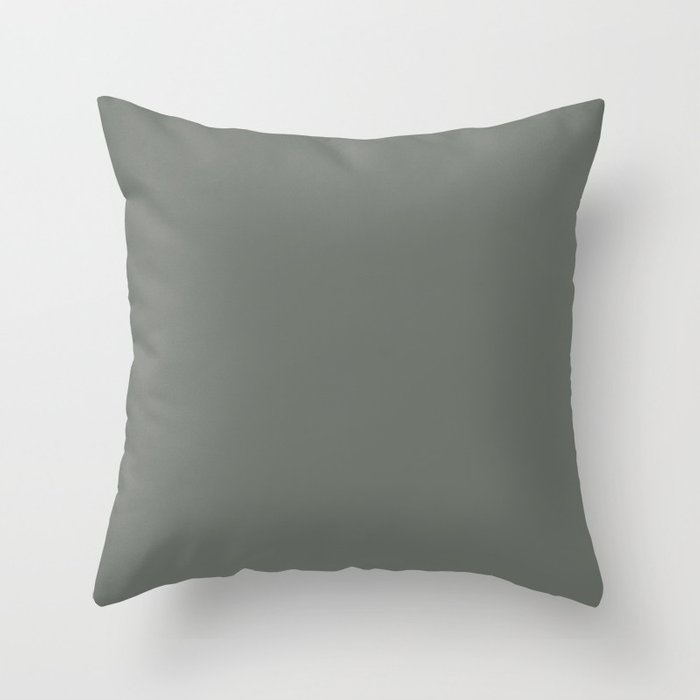 Neutral Grayed Green Solid Color Pairs Popular Hue HGTV Retreat HGSW3283 Throw Pillow