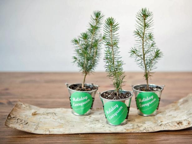 8 Inexpensive gift ideas for the holidays // CREATIVE GIVING: CLUTTER-FREE HOLIDAY GIFTS // organized Christmas // www.simplyspaced.com