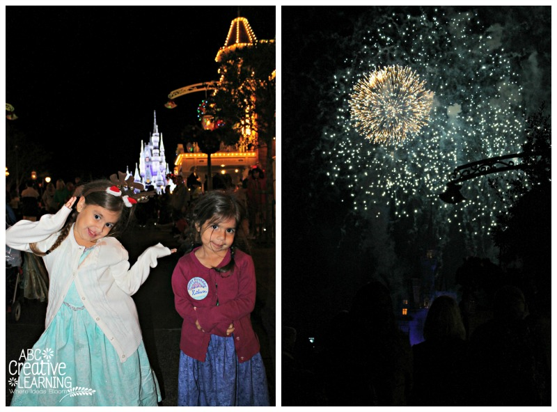 """Holiday Wishes Celebrate the Spirit of the Season"""" Fireworks"""