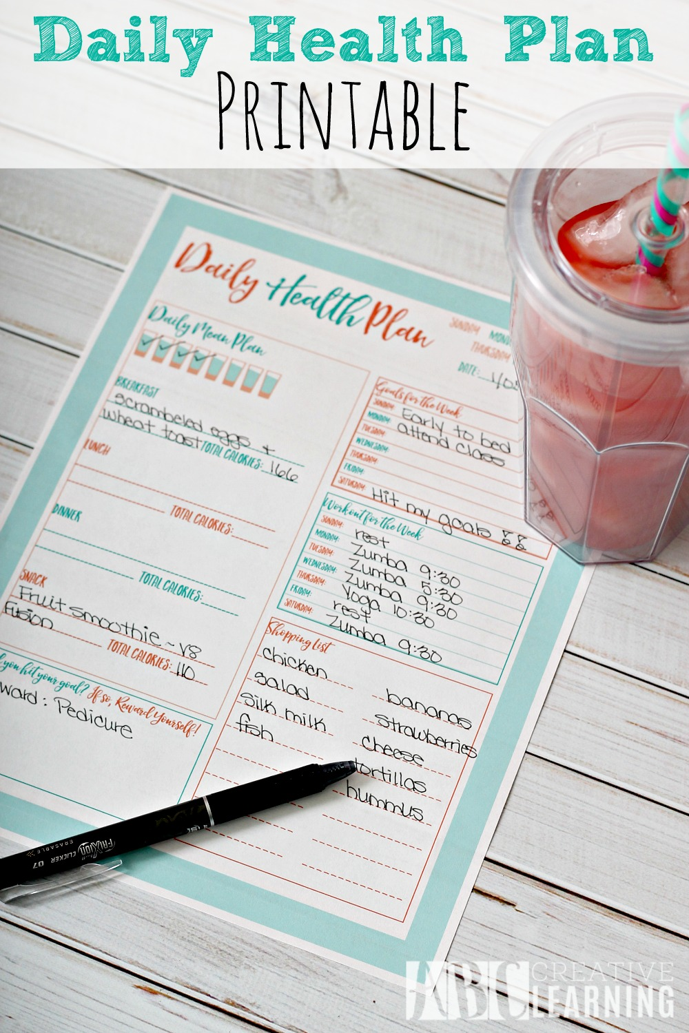 Daily Health Plan Printable