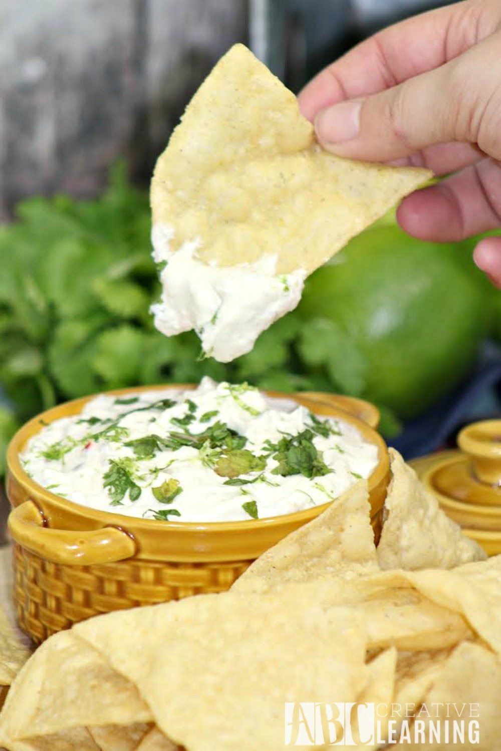 Southwest Jalapeño Dip Recipe