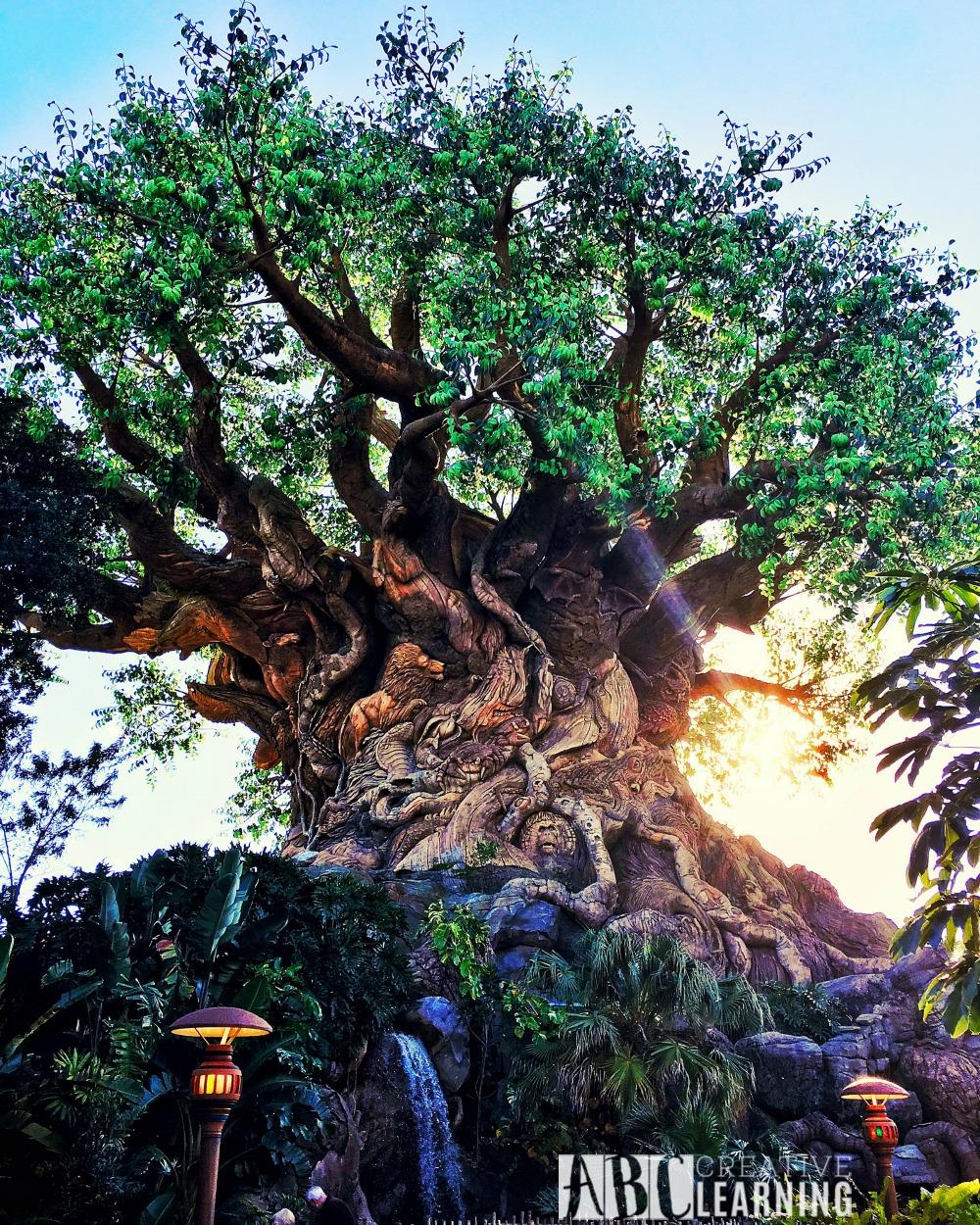 7 Reasons To Visit Disney's Animal Kingdom Theme Park