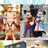 Top 4 Attractions To Visit At Walt Disney World