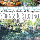 5 Things To Experience at Pandora World of Avatar at Disney's Animal King