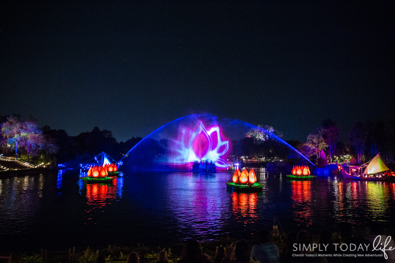 Rivers of Light Animal Kingdom
