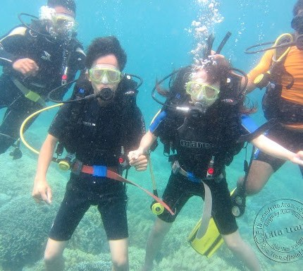 Discovery scuba diving in Cham island for certified divers