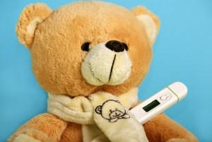 healthy teddy bear