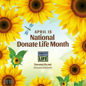 Donate Life sunflowers