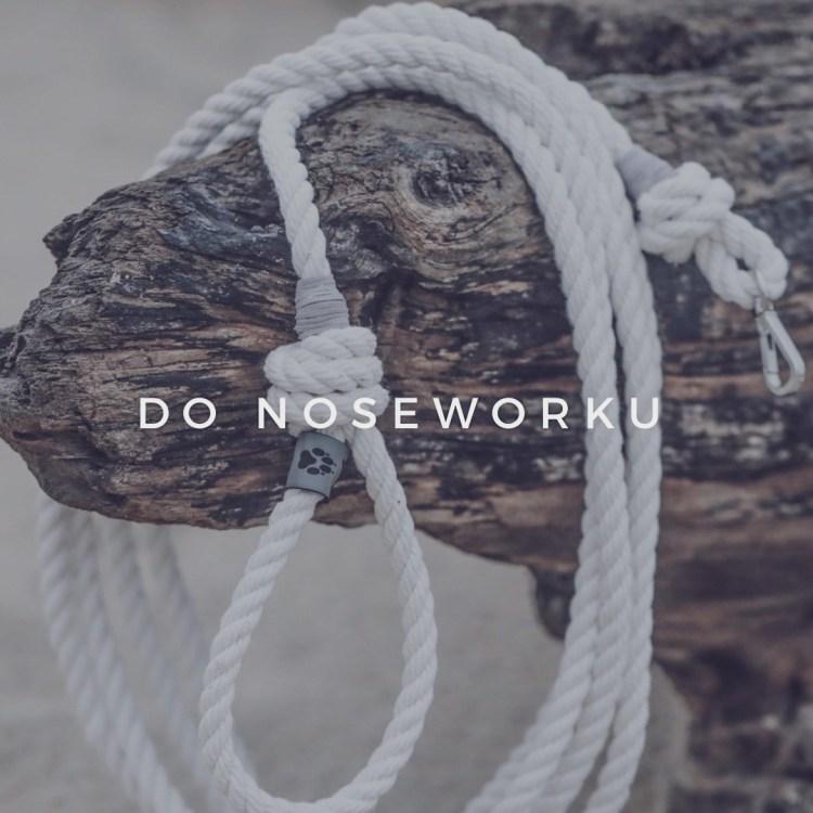do noseworku
