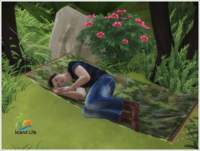 Sims by Severinka: Island Life objects • Sims 4 Downloads