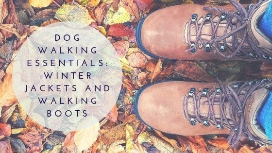 Dog walking essentials - winter jackets and walking boots