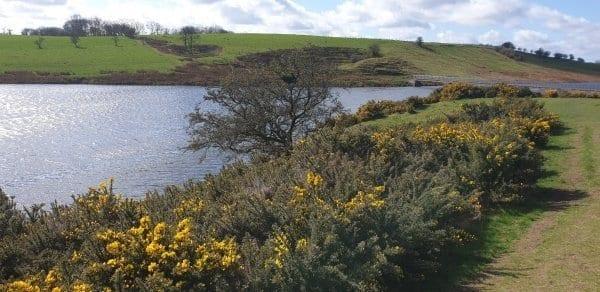 whitehead reservoir Sunday Walk