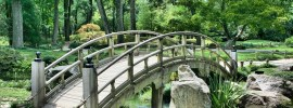 Best SIM Card for Japan - Garden