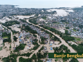 Ada 8 Izin Tambang Batubara di Hulu Sungai Bengkulu, 24 Orang Meninggal Dunia Diterjang Banjir.