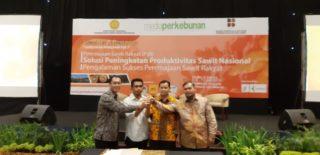 Geber Peremajaan Sawit, Organisasi Petani Kelapa Sawit Inginkan Peningkatan Produktivitas.