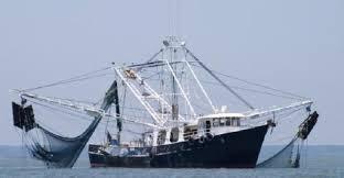 Kapal Trawl Masih Marak Beroperasi di Selat Malaka, Nelayan Tradisional Resah dan Gelisah.