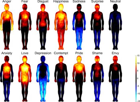 Abbildung, die zeigt, wo Emotionen im Körper gefühlt werden.