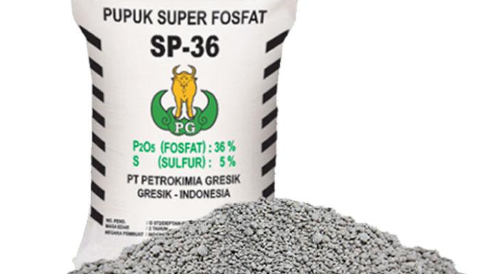 pupuk SUPER FOSFAT SP-36