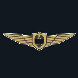 Las Vegas Aces Logo 2