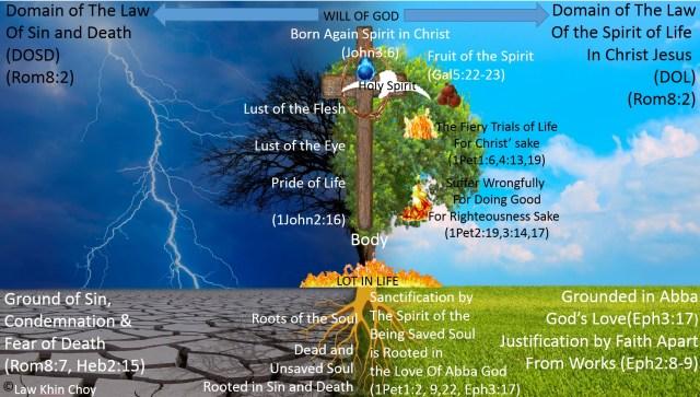 Man in God's Domain