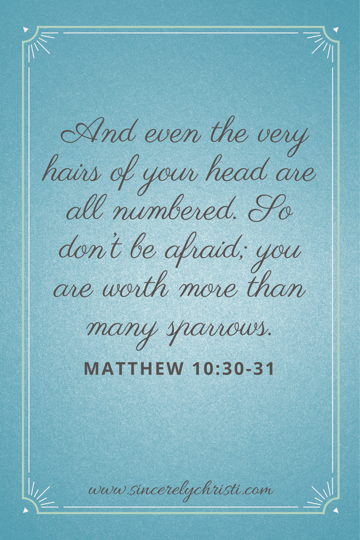 And even the very hairs of your head are all numbered. So don't be afraid; you are worth more than many sparrows.