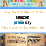 Why No One Should Miss AMAZON PRIME DAY