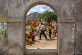The pre-Columbian traditions of Dia De los Muertos throughout Mexico honor and celebrate their ancestry. Today, the traditions still vary greatly from town to town. In San Martin Tilcajete, Oaxaca, the Zapotec community wakes up at dawn on October 31 to gather bouquets of fresh cempasuchiles and cresta de gallo—two iconic flowers used in the celebration to decorate the graves of their loved ones. It is believed that these native flowers help guide the souls of the deceased.