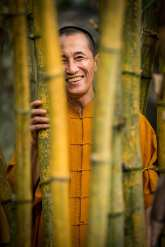 """""""Bamboo runs deep in Vietnamese tradition"""" Thich The Tuong tells me outside his modest home amongst a forrest of bamboo. He is a Buddhist Monk with a love for growing things. Travelling across Vietnam Tuong has collected over 100 species of bamboo which he cultivates in the bamboo gardens that surround us. He has a peaceful, friendly air about him and when I ask him about his daily life he replies with a Zen Buddhist poem, simple yet somehow profound. Tuong has a dream to one day create a bamboo conservation park where he can preserve all the species of bamboo in Vietnam."""