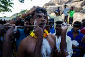"""Thaipusam Hindu Festival in Ananthapuram, Tamilnadu, India (Feb. 9th 2017). Thaipusam is a Tamil religious festival celebrated in many countries around the world during a specific astrological time of the year, the full moon of the Tamil month of Thai. Hindu religion is widely rooted in time and space, making it difficult to express any resolute opinion. """"Wearing the Vel"""" is a vow. Devotees of Muragan pierce their own bodies as thanksgiving to their god for having relieved them, or their beloved ones, from pain and sufferings. This moment is the acme of 48 days strict life. It starts at 5.30 am and by 10 am thousands of people crowd the holy locations. Believers gather near a water pond with lotus creepers. After a purifying bath, the devotees buy a Vel (javelins, spears, hooks, weights ..) by the Vel's vendors and hand it to a specifically entrusted man to pierce any part of the body. Ashes are applied on the area for the Vel. At the act of piercing, folks around say out loud: """"Govinda""""! After putting the spears, they all walk to the temple, some 2 km away, and wait for the fire walk. The festival is an explosion of colours coating serious and sad faces. Folklore and Faith going hand in hand. """"Wearing a Vel"""", walking on burning coal and other flagellation practices definitely require physical and psychological strength. Are these faith-driven powers? The mysterious signals from the ancient past seem to survive through apparently unconscious carriers in the infinite time of the universal knowledge. Questions raises when traditions are passed on almost fiercely from generation to generation, creating a mind setting where there is no space to other forms of celebration of life, that could possibly contaminate the original message? Out of ignorance, all these questions raise. What is the ultimate meaning of these manifestations of faith? Who are the holders of the real knowledge that can understand these intricate performances?"""