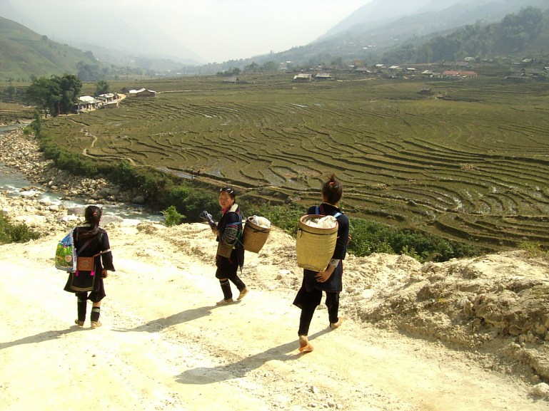 Sapa rice terraces - Arrozales y chicas Hmong