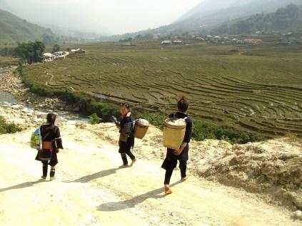 PIC02667 - Terrazas de arroz de Sapa, lo mejor de nuestro trekking de 2 días