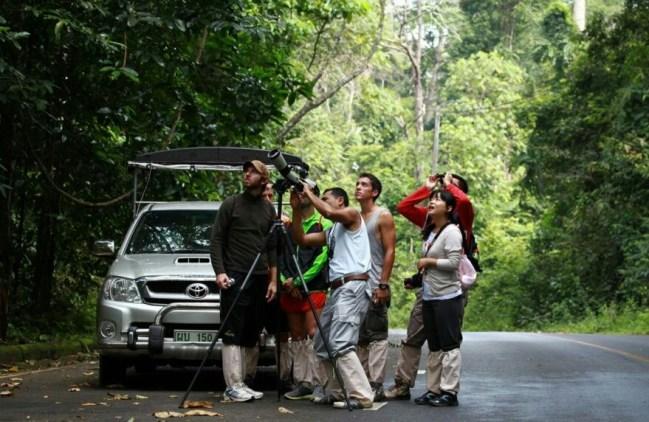 Tailandia Parque Nacional de Khao Yai 1 500x325 - Khao Yai National Park, 2 days jungle adventure