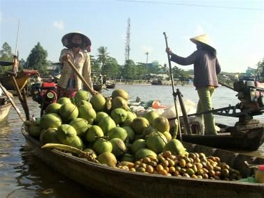 Vietnam Delta del Mekong - South Vietnam: Ho Chi Minh City and Mekong Delta