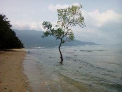 7 días Malasia - Isla de Tioman