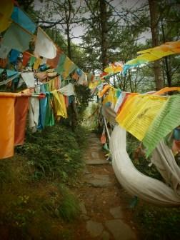 PA017819 - Viaje a Sichuan, ruta por el lado tibetano