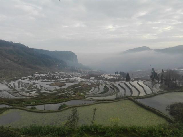 Yunnan Terrazas de arroz de Duoyishu - Viaje organizado a Yunnan: 12 días en China con chófer y guía