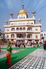 Amritsar - Templo Dorado 09