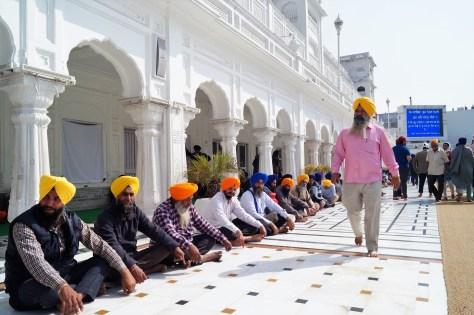 Amritsar - Templo Dorado 14