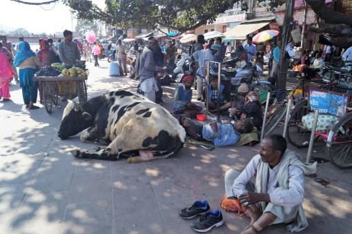 Haridwar Calle - Lo mejor de Haridwar: que ver en la ciudad más sagrada de la India