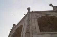 Taj Mahal Detalles decorativos - La curiosa historia del Taj Mahal: amor, simetría y sacrificio